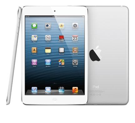 iPad Mini Water Damage